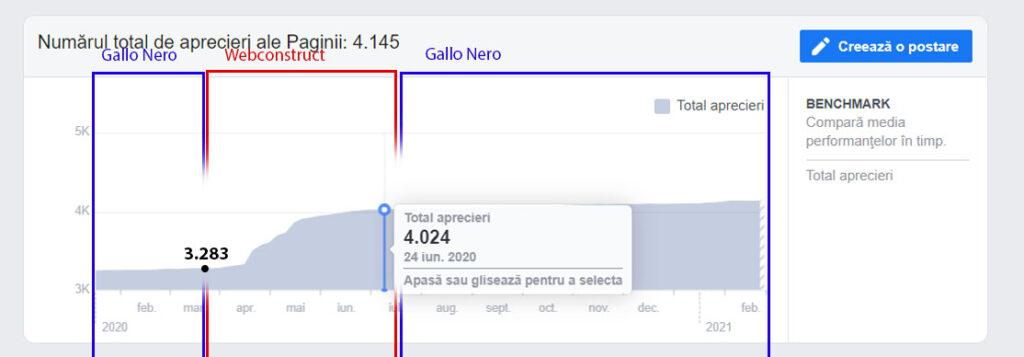 statistici postari facebook gallo nero ramnicu valcea webconstruct creare site marketing online pagina like